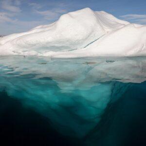 Il nostro iceberg si sta sciogliendo | Recensione